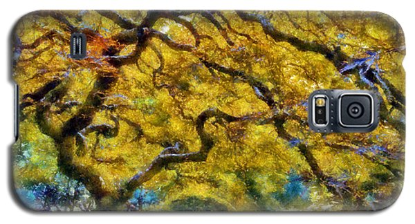 Japanese Maple In Washington Park Galaxy S5 Case by Kaylee Mason