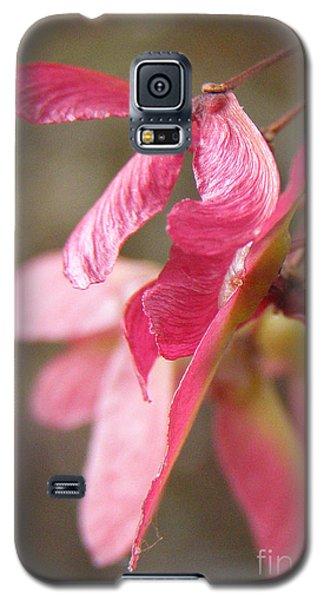 Japanese Maple Keys Galaxy S5 Case