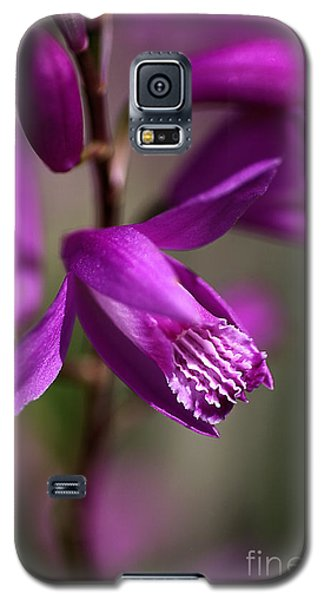 Galaxy S5 Case featuring the photograph Japanese Orchid by Joy Watson
