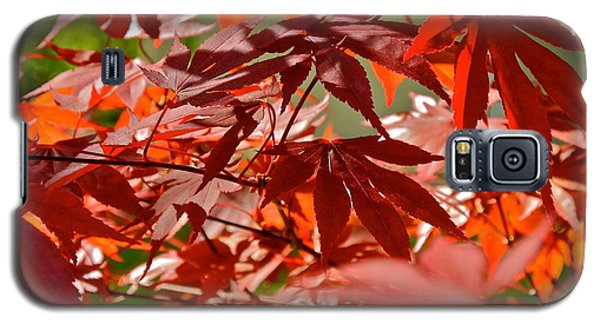 Japanese Red Leaf Maple Galaxy S5 Case