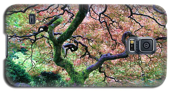 Japanese Tree In Garden Galaxy S5 Case by Athena Mckinzie
