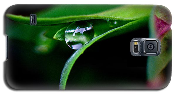 Jasper - Rain Drop Plant Galaxy S5 Case