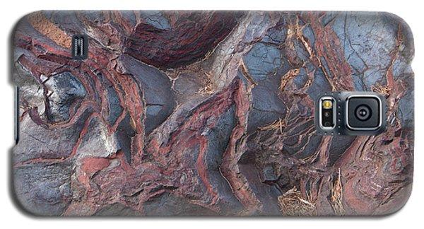 Jaspilite Galaxy S5 Case by Paul Rebmann