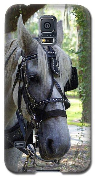 Jekyll Horse Galaxy S5 Case