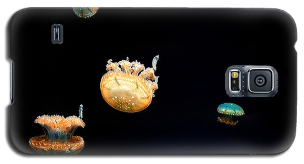 Jellies Galaxy S5 Case