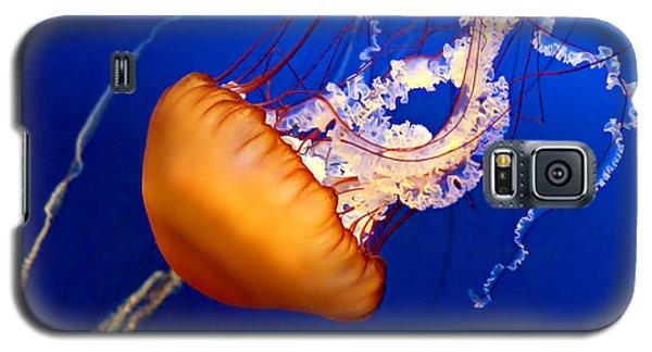 Jelly #2 Galaxy S5 Case by Nikolyn McDonald