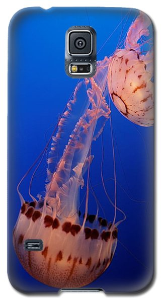 Jelly And Fishy Galaxy S5 Case