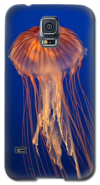 Galaxy S5 Case featuring the photograph Jelly Fish by Eti Reid