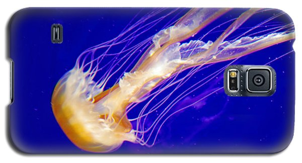 Jelly Fish Galaxy S5 Case