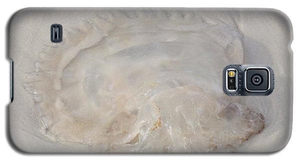Galaxy S5 Case featuring the photograph Jellyfish 2  by Deborah DeLaBarre