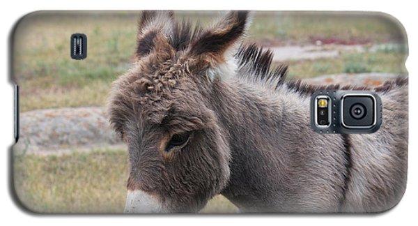 Jerusalem Donkey Galaxy S5 Case