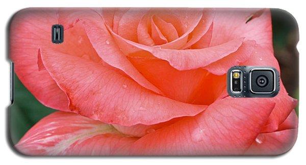 Jewel Galaxy S5 Case by Julie Andel