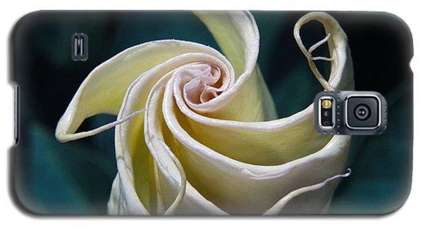 Jimsonweed Flower Spiral Galaxy S5 Case
