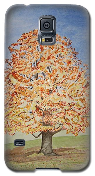Jolanda's Maple Tree Galaxy S5 Case