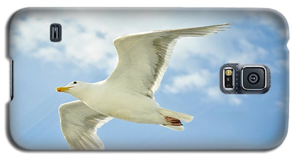 Jonathon Alight Galaxy S5 Case