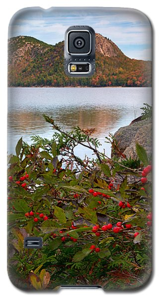 Jordan Pond With Berries Galaxy S5 Case