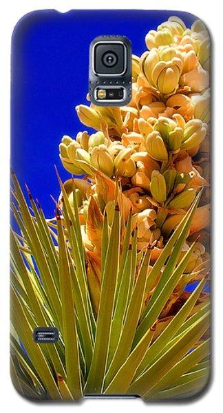 Joshua Bloom By Diana Sainz Galaxy S5 Case
