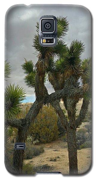 Joshua Cloudz Galaxy S5 Case by Angela J Wright
