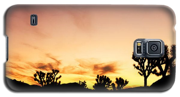 Joshua Sunrise Galaxy S5 Case