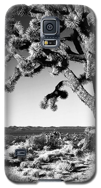 Joshua Tree Bw Galaxy S5 Case
