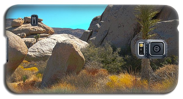 Joshua Tree National Park Galaxy S5 Case