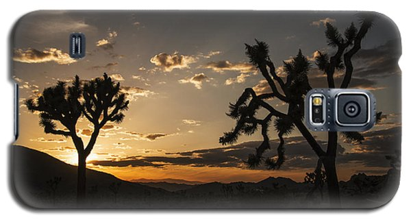 Joshua Tree Sunset Silhouette 2 Galaxy S5 Case