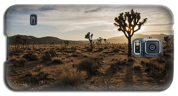 Joshua Tree Sunset Silhouette Galaxy S5 Case