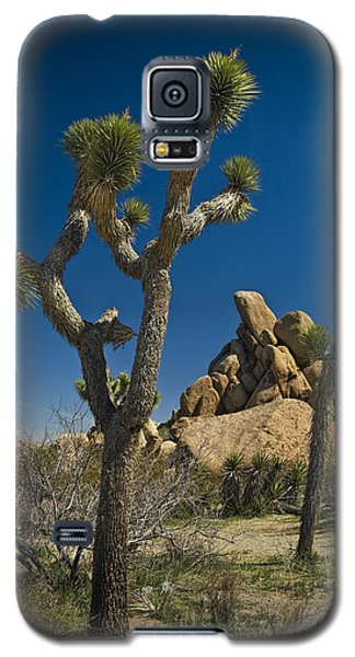 California Joshua Trees In Joshua Tree National Park By The Mojave Desert Galaxy S5 Case