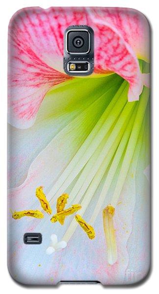 Joy Galaxy S5 Case by David Lawson