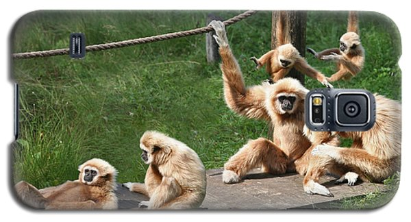 Joyful Monkey Family Galaxy S5 Case