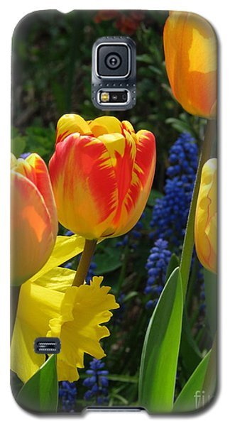 Jubilance Galaxy S5 Case by Rory Sagner