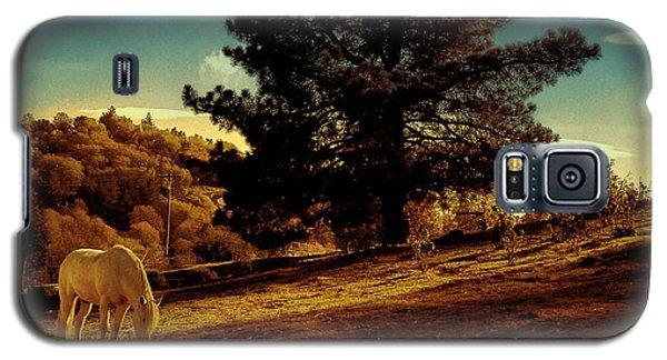 Springtime California Landscape Galaxy S5 Case