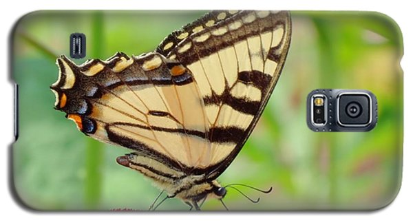 July Swallowtail Galaxy S5 Case