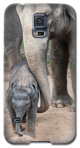 Jumbo Love Galaxy S5 Case