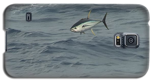 Jumping Yellowfin Tuna Galaxy S5 Case