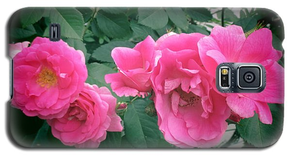 June Rose II Galaxy S5 Case