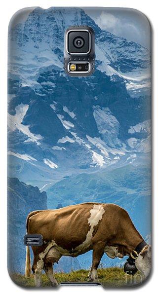 Jungfrau Cow - Grindelwald - Switzerland Galaxy S5 Case