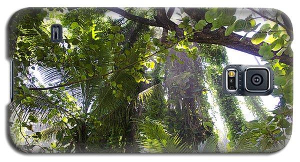 Jungle Canopy Galaxy S5 Case