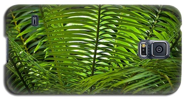 Jungle Fern Galaxy S5 Case