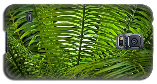 Jungle Fern Galaxy S5 Case