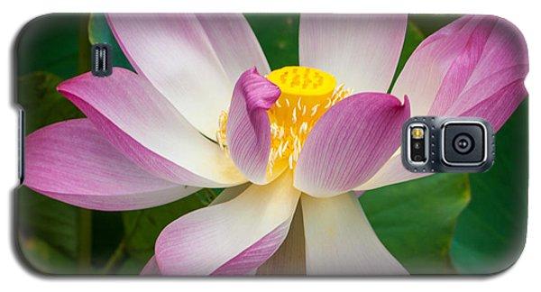 Jungle Garden Flower Galaxy S5 Case