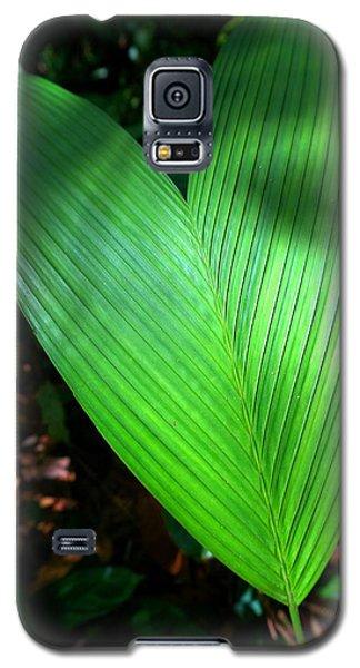 Jungle Heart Galaxy S5 Case by Julia Ivanovna Willhite