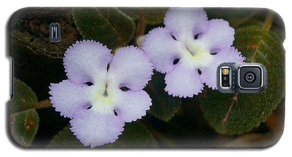 Jungle Wildflower Galaxy S5 Case by Blair Wainman