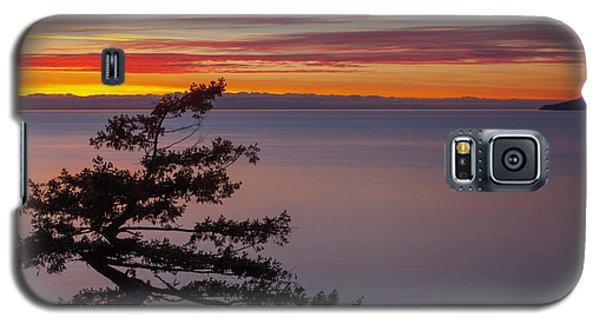 Juniper Point Galaxy S5 Case