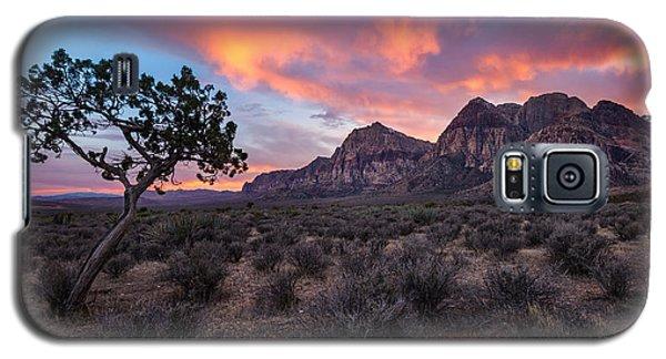 Juniper Sunset Galaxy S5 Case