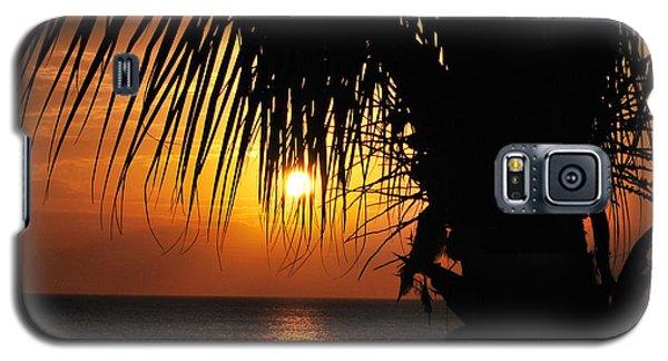 Junkanoo View Galaxy S5 Case by Judy Wolinsky