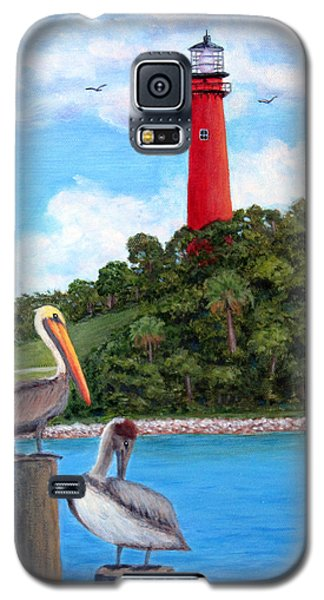 Jupiter Inlet Pelicans Galaxy S5 Case by Fran Brooks