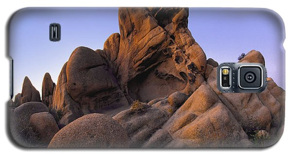 Jurassic Rocks Galaxy S5 Case