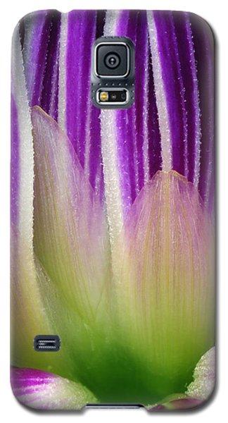 Just A Dahlia 1 Galaxy S5 Case by Wendy Wilton
