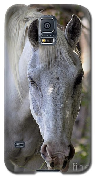 Just A Horse Galaxy S5 Case